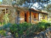 a simpler life el pocito house exterior 08