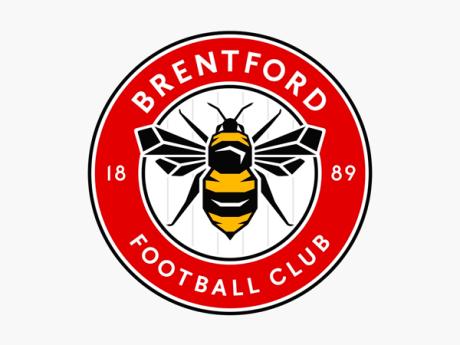 Detalles del nuevo logo