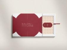 salon-lane-ap3