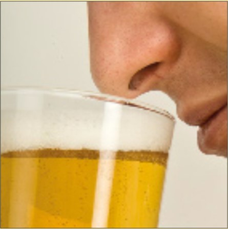Olfato-para-cata-de-cervezas-El-Portal-del-Chacinado