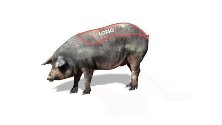 Pieza-del-lomo-de-cerdo-iberico-en-el-cerdo-El-Portal-del-Chacinado