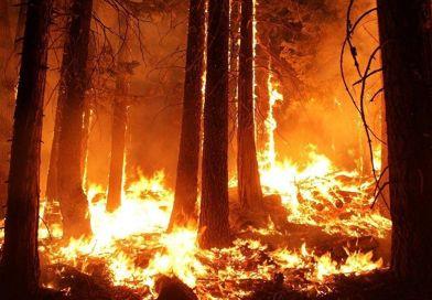 La NASA capta las 'nubes de fuego' generadas por los incendios forestales
