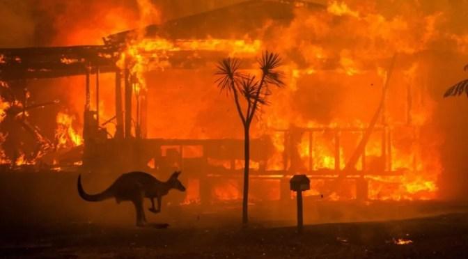 Los incendios en Australia revelan el desprecio de las élites gobernantes hacia los trabajadores