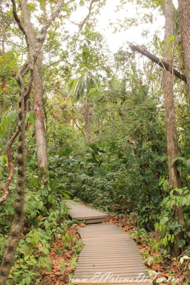 Trekking por el Parque Tayrona