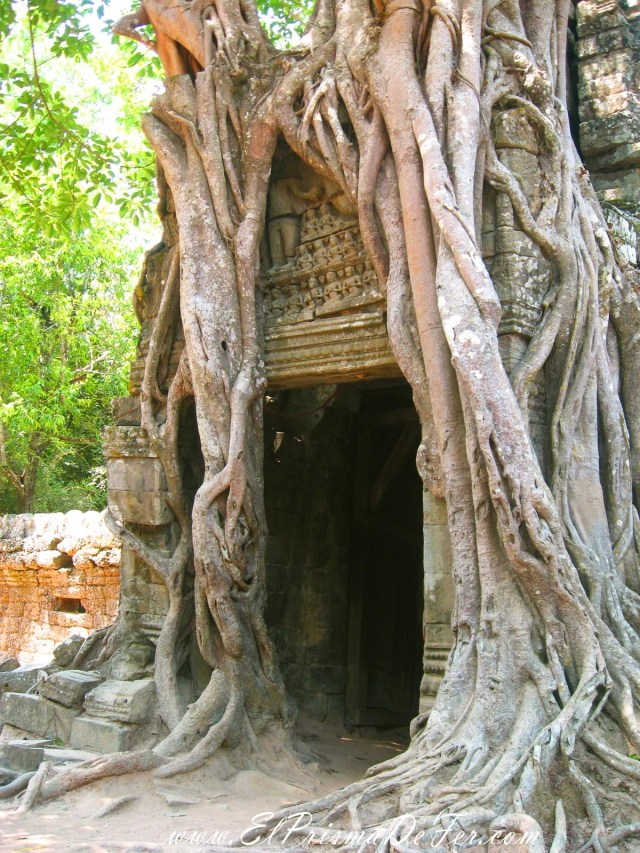 Ruinas de Ta Som
