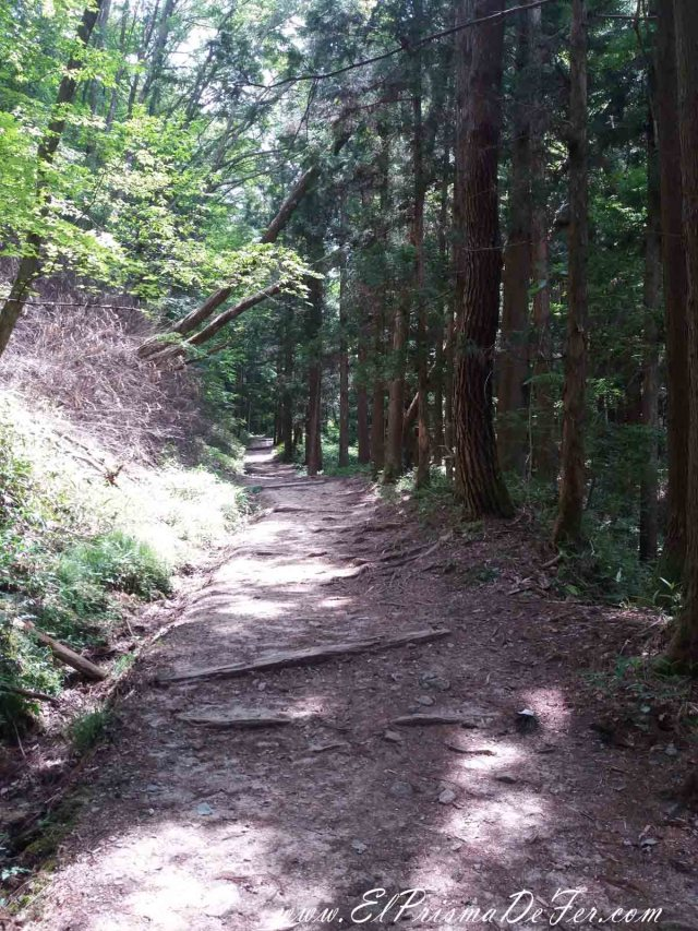 Paisajes de la Ruta Nakasendo