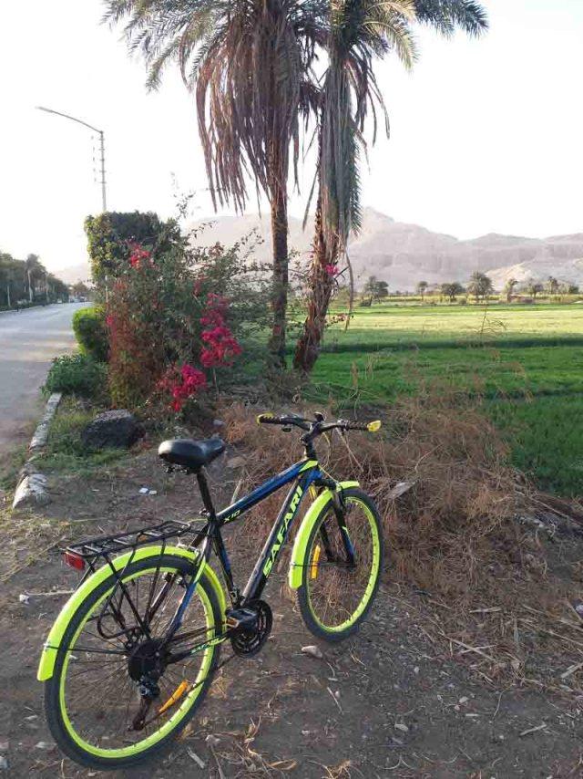 La bicicleta que use para hacer todo el recorrido por la costa occidental de Luxor