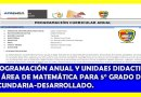 PROGRAMACION ANUAL Y UNIDADES DIDÁCTICAS DESARROLLADOS DE ÁREA DE MATEMÁTICA 5° GRADO DE SECUNDARIA LISTO PARA ADJUNTAR A SU PORTAFOLIO DOCENTE.