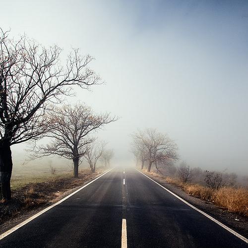 para donde vas, camino, destino, decisiones