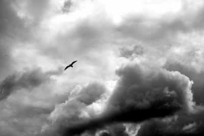 tempestad, tormenta, tempestades