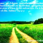 frases cristianas, facebook, citas biblicas, paisaje, naturaleza, camino
