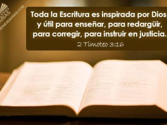 justicia, biblia, mundo