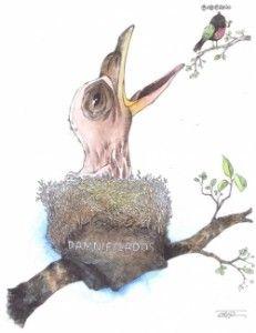 Mexico un nido