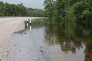 Inundación parcial de vía federal3