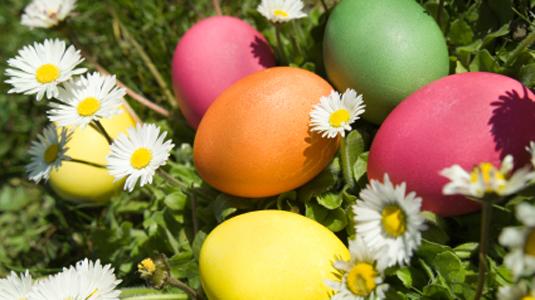طريقة عمل بيض شم النسيم الملون كيف الون البيض في شم الن