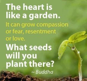 Quotes-About-Planting-Seeds-For-Life-02
