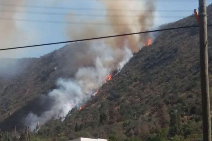Alerta Roja por incendio forestal en sector de la Bodeguilla de Olmué