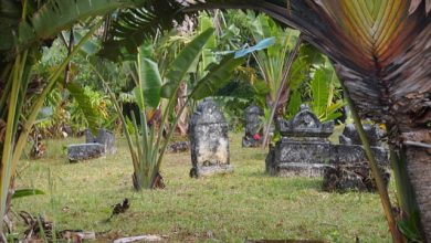 Photo of El cementerio pirata de Madagascar