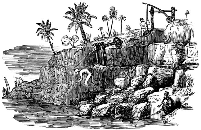 jardin antiguo egipto