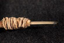 Photo of Descubren una herramienta para tatuar de 2000 años