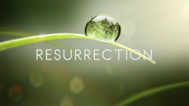 Audiencias USA: ABC remonta con Resurrection