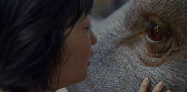 Netflix presenta 'Okja'