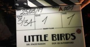 David Costabile y Matt Lauria se unen a 'Little Birds' de Sky