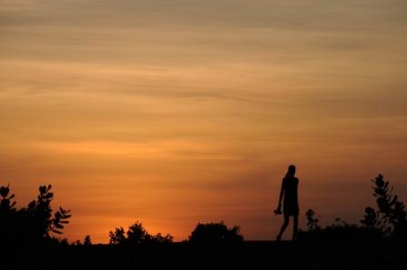 Silhouette of marile shepherd