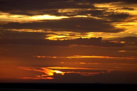 Sunset from Phnom Bakeng hill