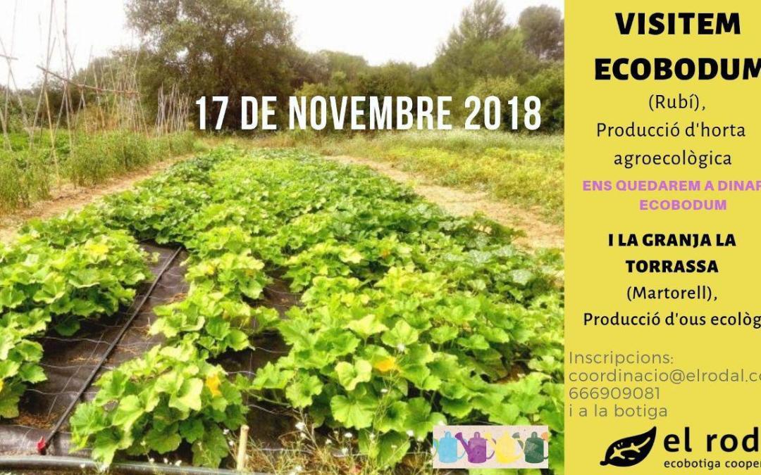 Visita a Ecobodum i a El galliner de la Torrassa