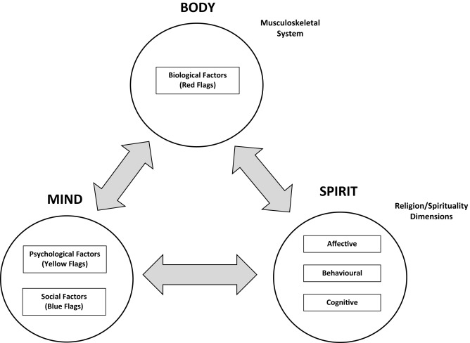 Refining the biopsychosocial model for musculoskeletal