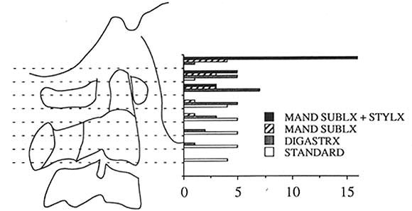 Selection of the approach to the distal internal carotid