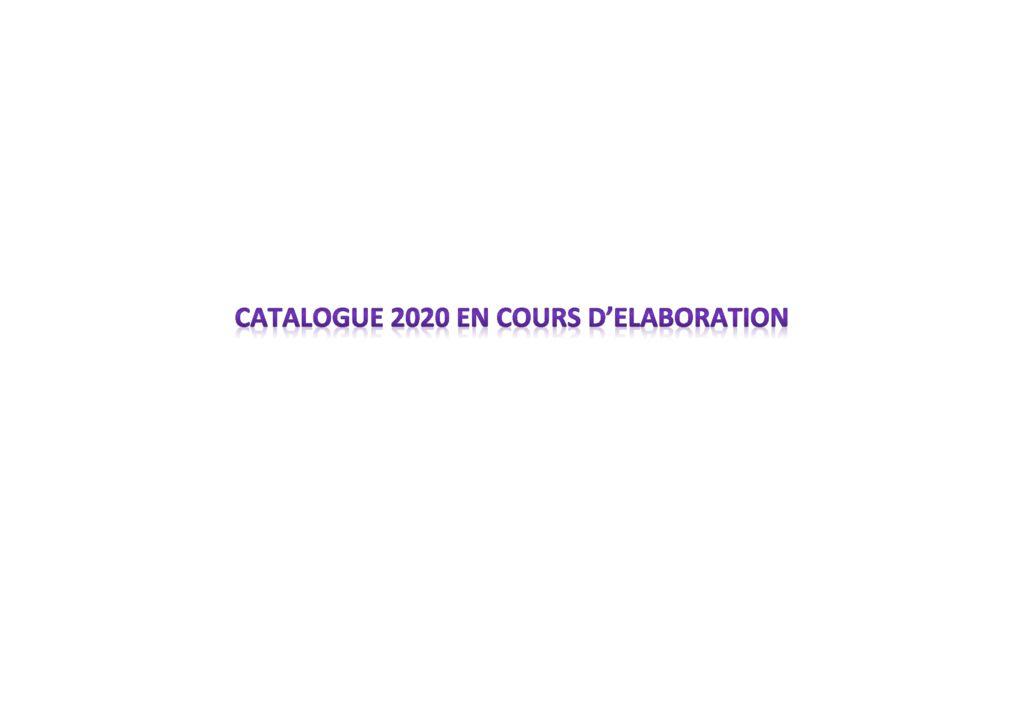 thumbnail of Catalogue 2020 en cours d
