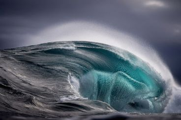 Sea Monster - Ray Collins