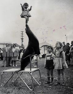 Vintage Photo - Circus 1933