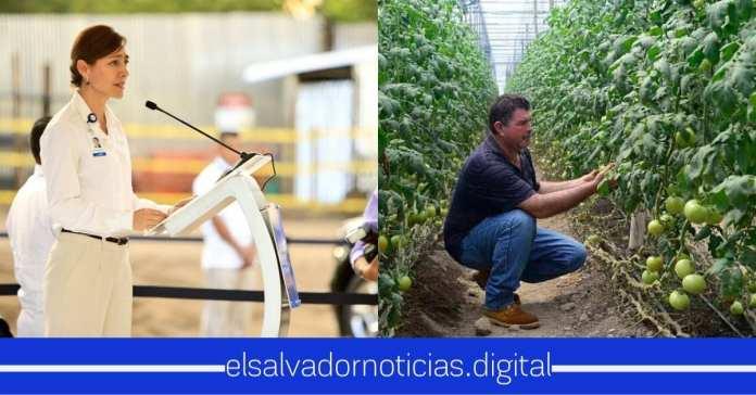 Cristina Ronsky afirma que la distribución de fruta y verdura de Walmart es de productores Salvadoreños