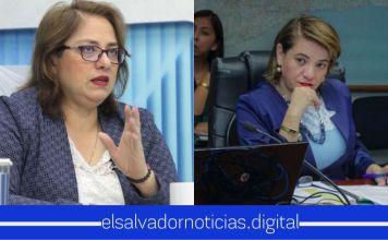 Ministra de Salud lamenta que la diputada Rina Araujo no tenga el debido conocimiento para diferenciar entre crisis del agua y crisis de salud pública