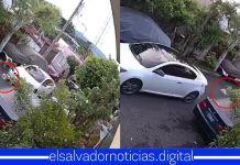 Gobierno impone multa de $1,200 a sujeto que atropelló y mató con lujo de barbarie a perrito en San Salvador