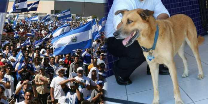 Salvadoreños aseguran que el único que tendrá plaza segura en la Asamblea es Canelo