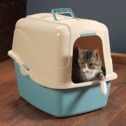 Gato en arenero - Evitar el marcaje de orina por estrés con Feliway