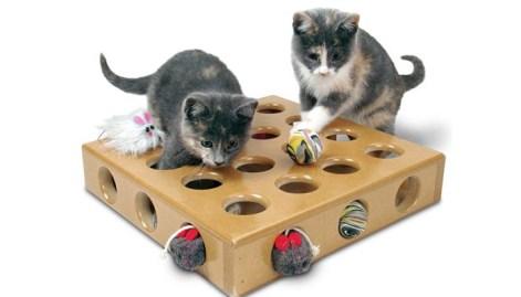 Cómo hacer tú mismo una caja de agujeros para gatos