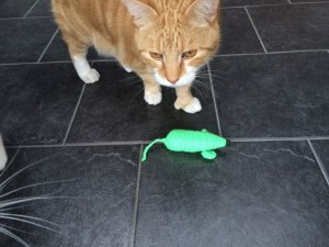 Crochet mouse toy and ginger cat
