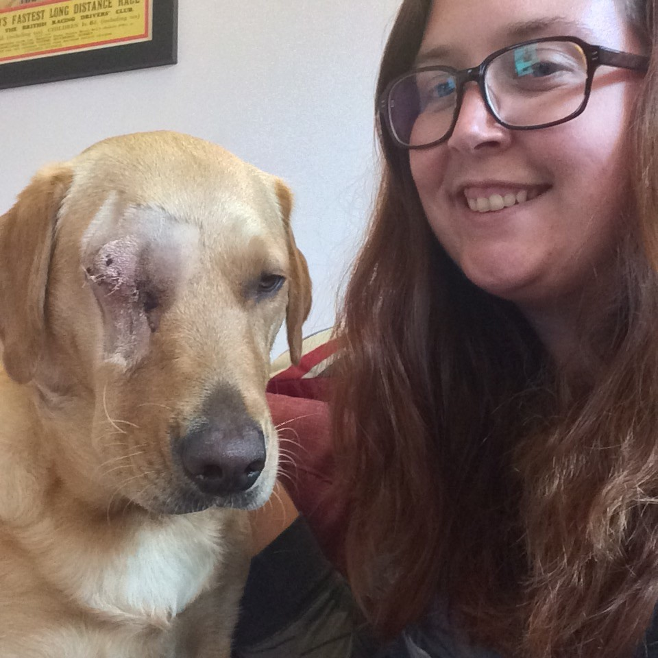 Post-operative selfie - labrador eye removal.