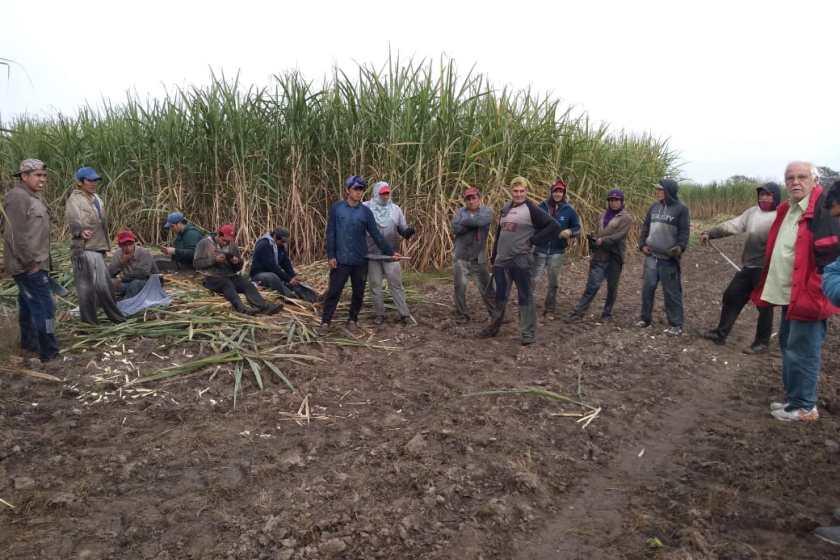 FOTIA detecta trabajo semiesclavo de trabajadores del surco