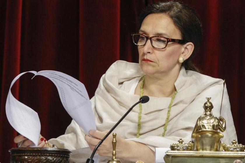 La vicepresidente Michetti creó el comité de violencia género por el caso Alperovich