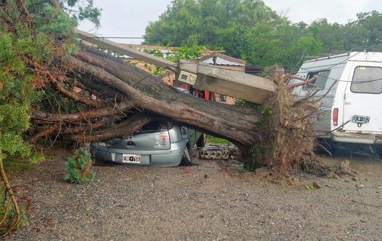 TRANCAS: Tormenta, fuertes vientos,  granizo y caída árboles