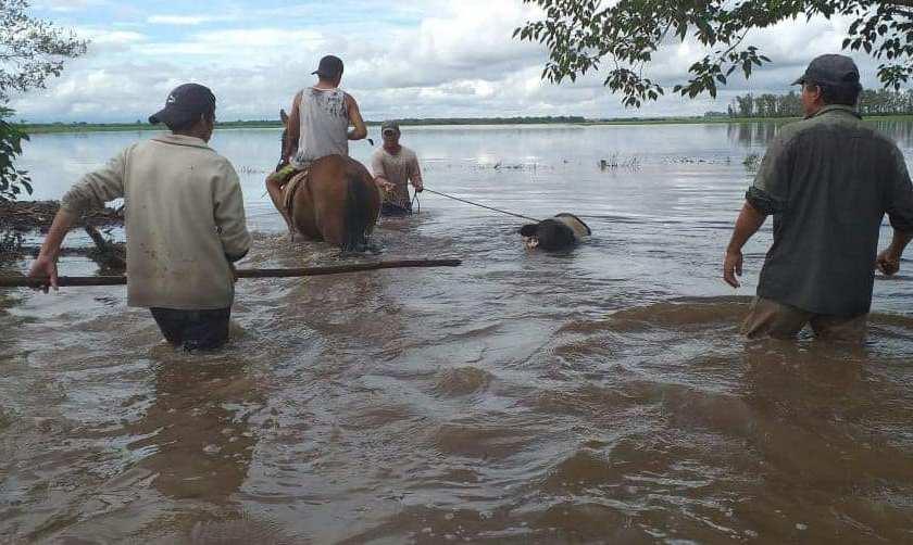 El Este tucumano inundado: Galeria de imagenes