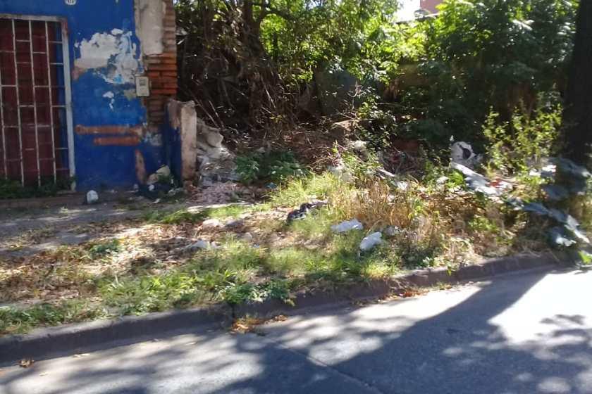 DENGUE: Vecinos multiplican sus quejas y nadie se hace cargo del basural de calle 12 de octubre al 400