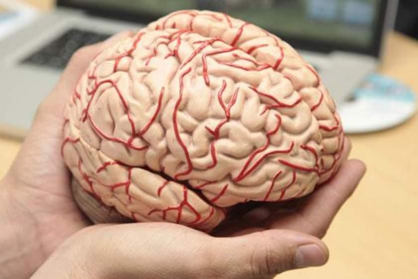 Chile el primer país en el mundo en legislar la neuro protección de las personas como un derecho humano