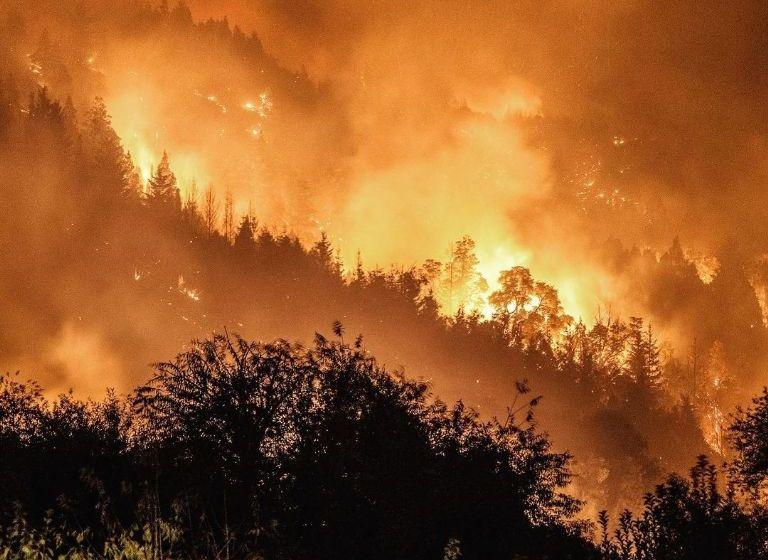 Desoladoras imágenes de los incendios en la Patagonia